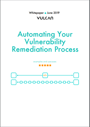 The Guide to Automating Your Vulnerability Management Process